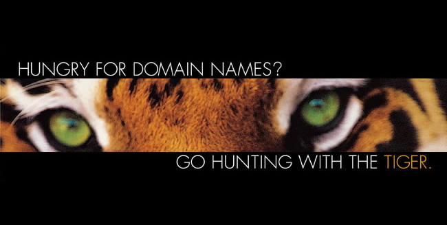 GO HUNTING FOR DOMAIN NAMES with nametiger.com